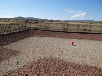 Dog Exercise Area