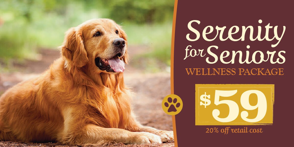 Serenity for Seniors Wellness Package